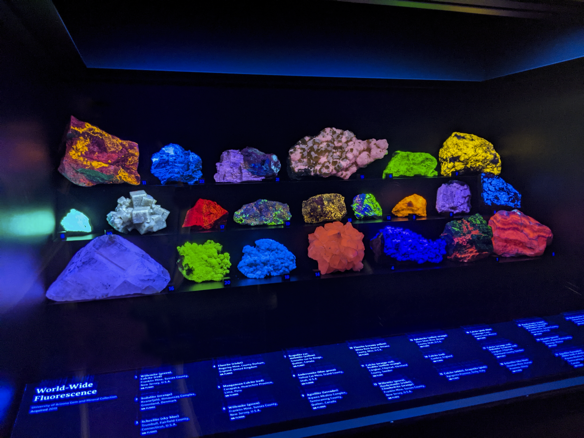 Fluorescence Hall for Web